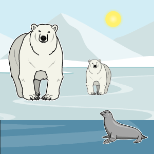 Where do Polar Bears Live? Lesson Plans