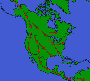 First Migrations into the Americas Vocabulary
