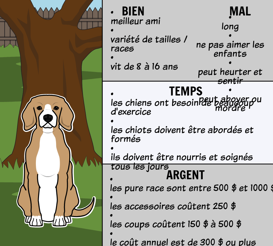 Good Pet, Bad Pet - Résumé du Texte Informatif
