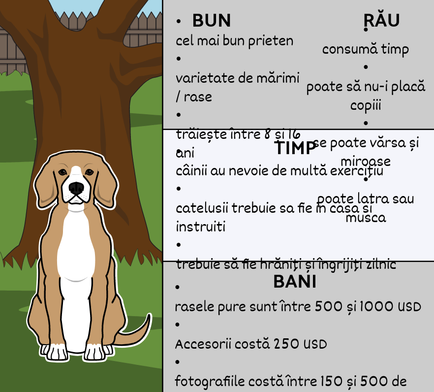 Bun Pet, Bad Pet - Rezumat Text Informativ