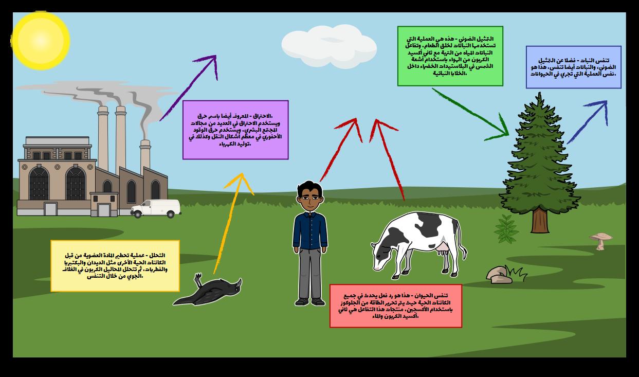 جعل مخطط دورة الكربون