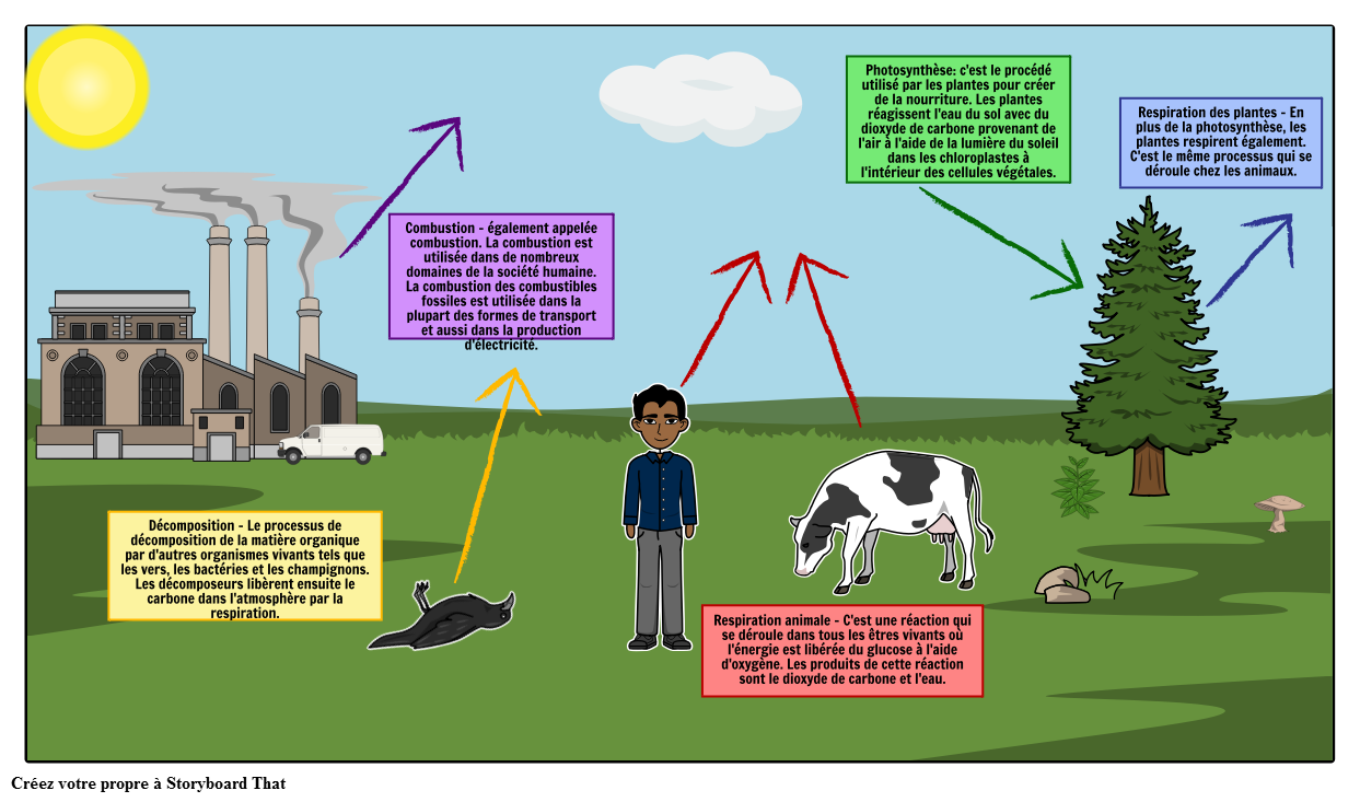 Le Diagramme du Cycle du Carbone القصة المصورة من قبل fr-examples