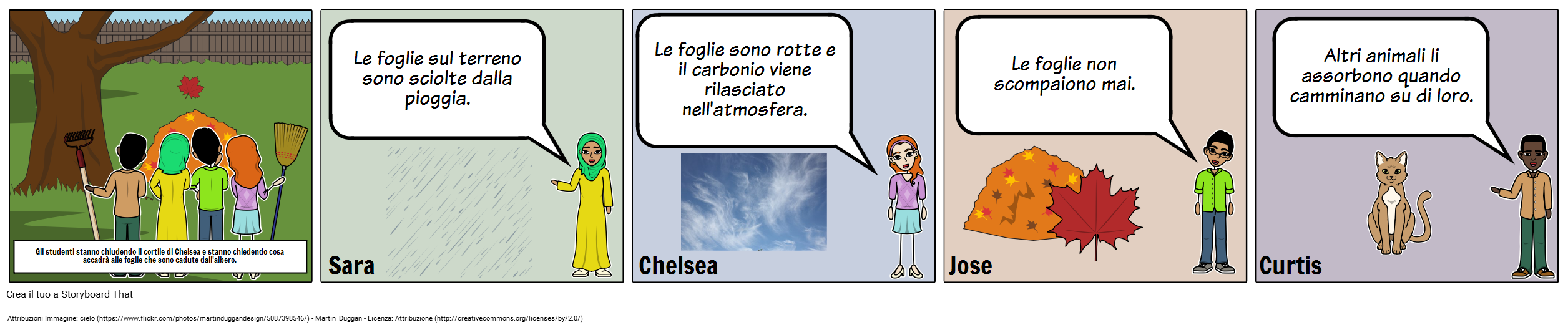 Storyboard di Discussione - MS - Il Ciclo del Carbonio