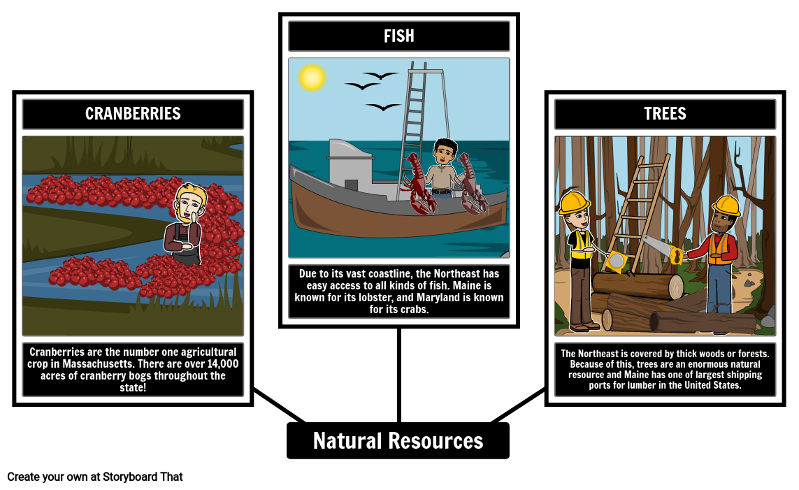 Northeast Natural Resources
