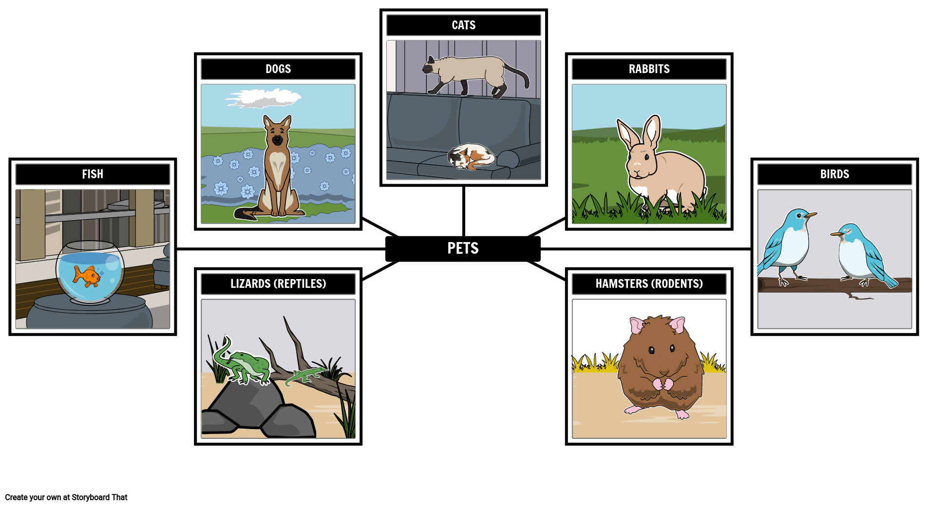 Spider Map - Pets
