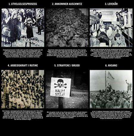 Historien om Holocaust - Livet i Auschwitz