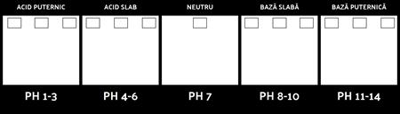 Template Scala pH