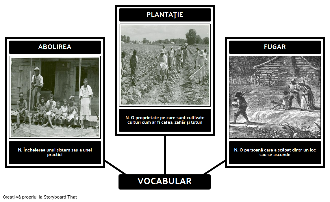 Underground Railroad - Vocabular