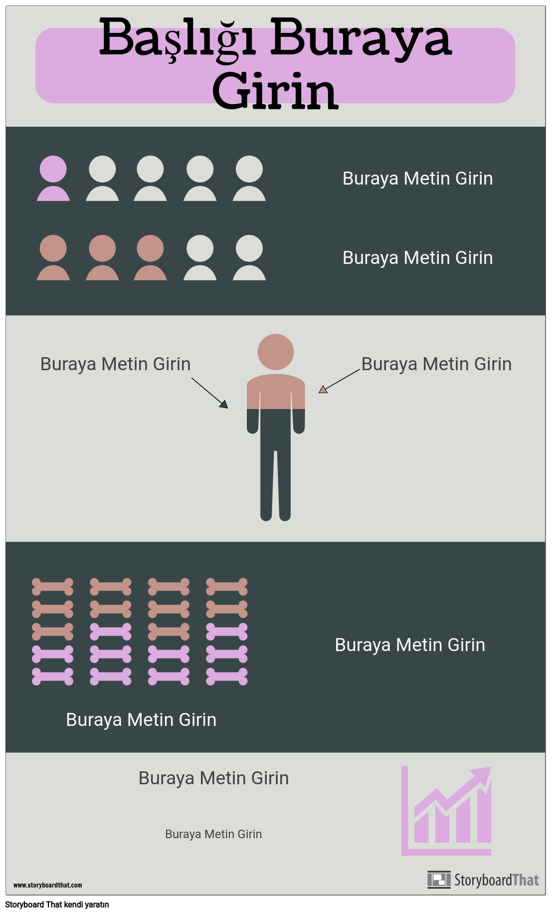 İstatistiksel Infographic
